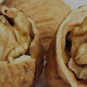 Будьте акуратними з волоськими горіхами при годуванні