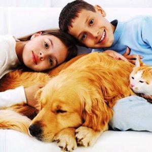 Діти і домашні тварини: алергія