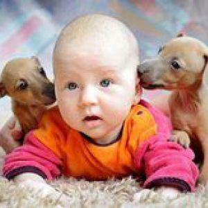 Діти і тварини: за і проти