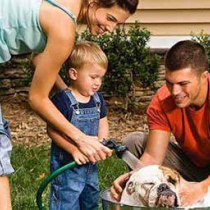 Яку собаку вибрати для дитини
