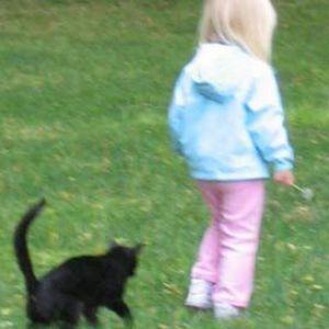 Якщо дитину вкусила кішка