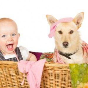 Як правильно вибрати домашня тварина для дитини?