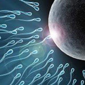 Як поліпшити погану спермограмму?