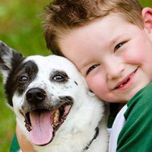 Як вибрати домашня тварина для дитини
