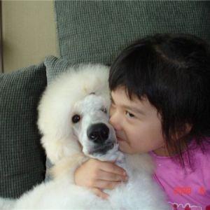Яку собаку подарувати дитині