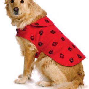 Комбінезони для собак. Викрійки, зшити своїми руками одяг