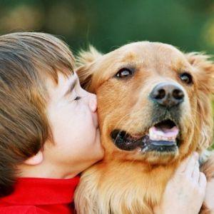 Малюк і домашні тварини: плюси і мінуси