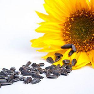 Чи можна насіння мамі, що годує?