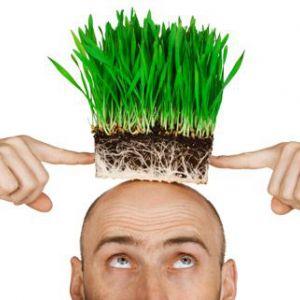 Пересадка волосся