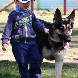 Дитина вдома: перша зустріч з собакою чи кішкою