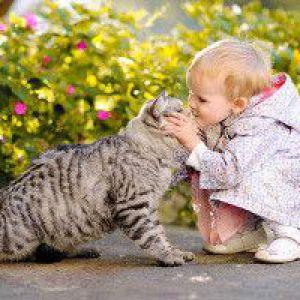 Дитина і домашні тварини - плюси і мінуси