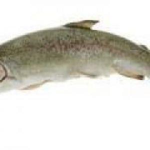 Рибне парове суфле (від 1 року до 1,5 років)