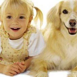 Собака для сім`ї з дітьми - яку породу вибрати?