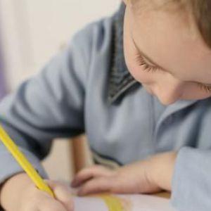 Виховання обдарованих дітей - як їх краще направляти