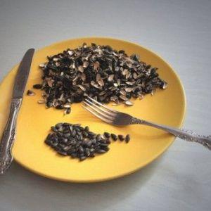 Шкода чи користь насіння під час грудного вигодовування